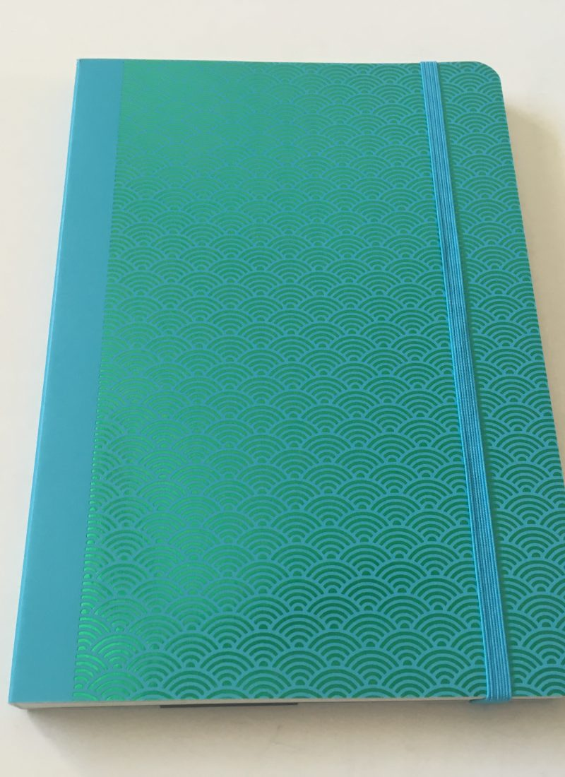 CEDON Dot Grid Notebook Review (Pros, Cons & Pen Testing)