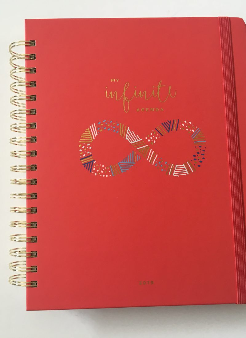 My Infinite Agenda Planner Review (4 pages to plan each week)