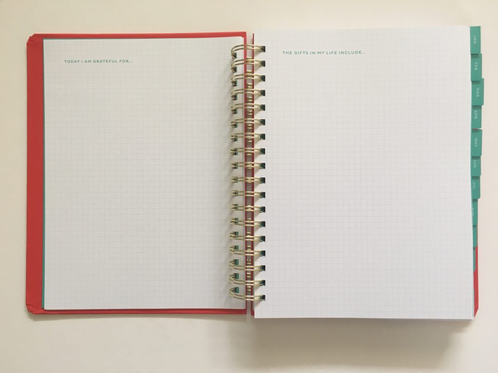 my infinite agenda weekly planner review pros and cons paper quality large page size 4 pages per week plenty of room to write unlined video flipthrough_08
