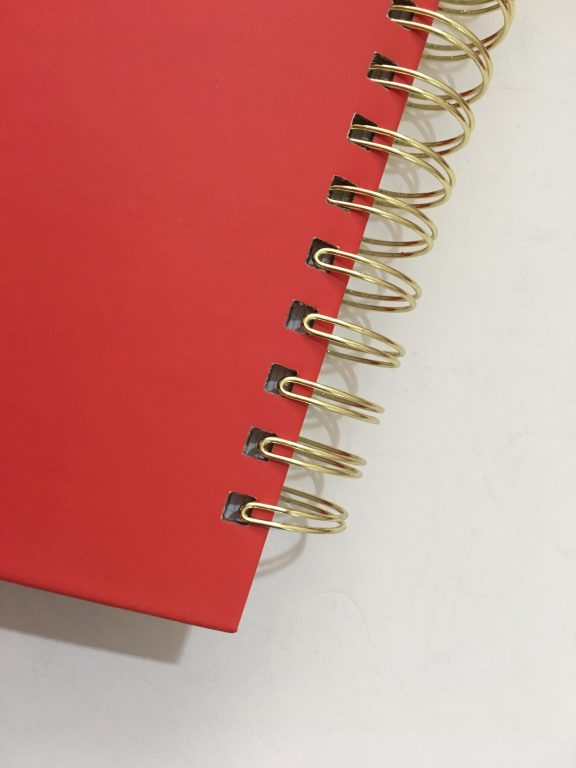 my infinite agenda weekly planner review pros and cons paper quality large page size 4 pages per week plenty of room to write unlined video flipthrough_33