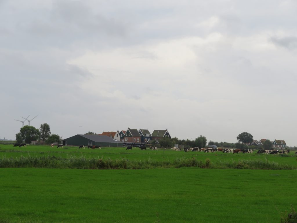 walk from marken bus stop to marken lighthouse dutch countryside day trip from amsterdam