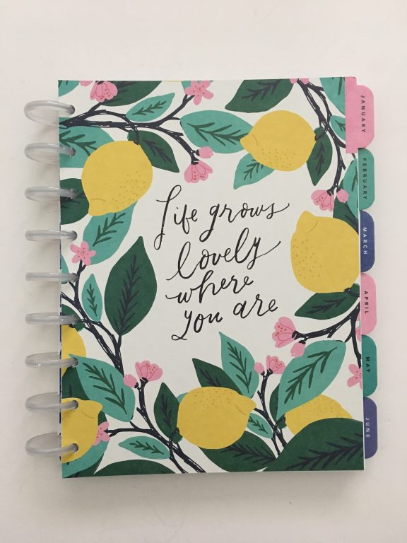 Maggie Holmes day to day planner discbound vertical weekly minimalist similar alternative to mambi happy planner floral_10