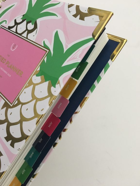 emily ley simplified planner daily day to a page layout tabs gold foil pineapple schedule 6am to 9pm hourly rainbow_01