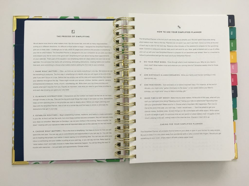 emily ley simplified planner daily day to a page layout tabs gold foil pineapple schedule 6am to 9pm hourly rainbow_23