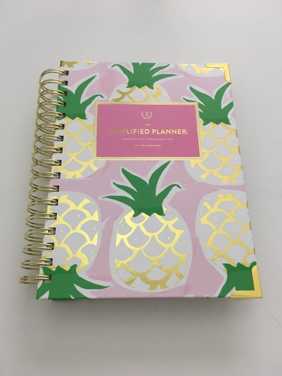 emily ley simplified planner daily day to a page layout tabs gold foil pineapple schedule 6am to 9pm hourly rainbow_35