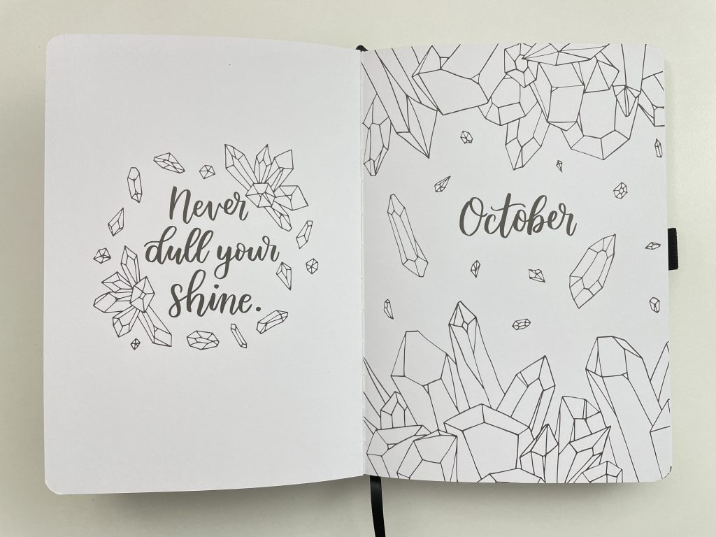 amanda rach lee doodle planner review pros and cons video flipthrough themed spreads weekly monthly goals habit tracker mood