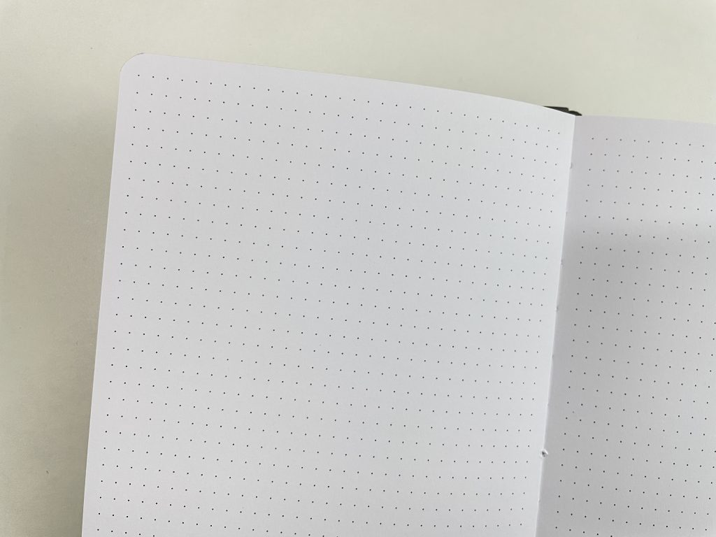 doodle planner review pros and cons 5mm dot grid honest review of amanda rach lee