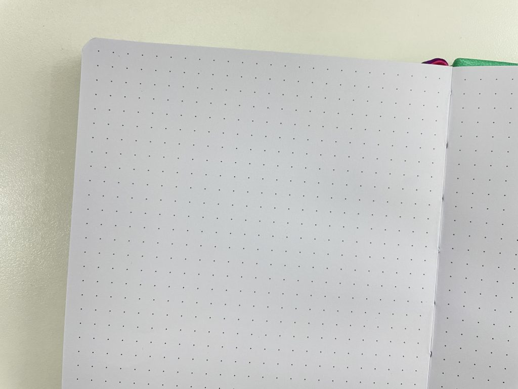 go girl budget planner review monthly goals income expenses spending categorised dot grid pages Christmas review
