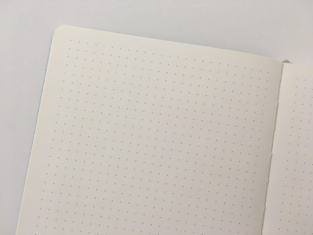 scribe dotted journal notebook review ivory 5mm dot grid pros and cons amazon video flipthrough