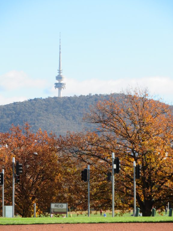 View of the Telstra Tower from the Australian War Memorial Canberra Australia itinerary