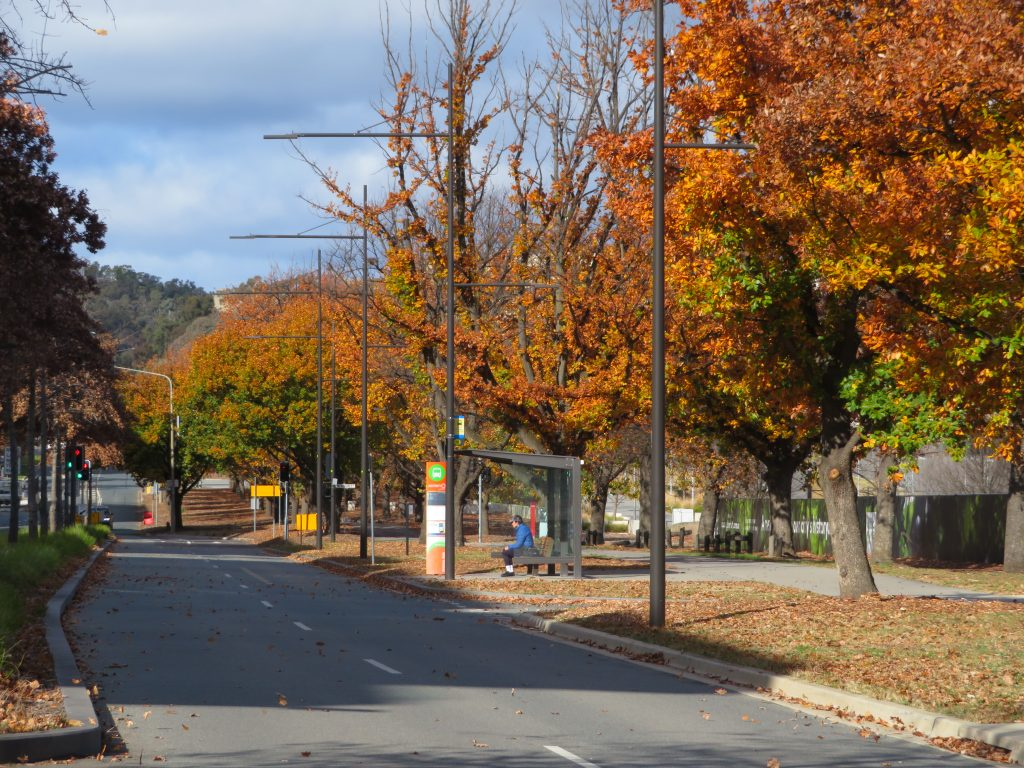 canberra in june autumn colors best of canberra in one day itinerary things to see and do constitution avenue
