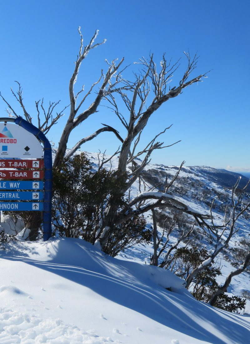 thredbo snowshoeing tour review skiing australian holiday itinerary canberra winter